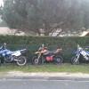 Voici des photos sur nos motos prises ensemble